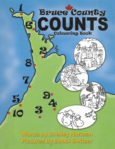 Bruce County Counts cover